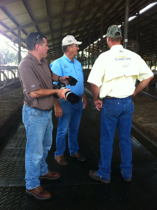 Collaborating in the cow barn